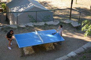 Activités Ping Pong